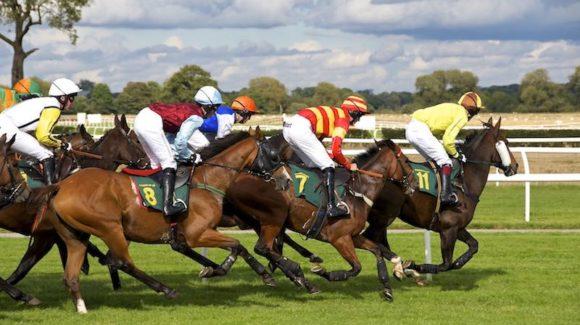 Apuestas de carreras de caballos online