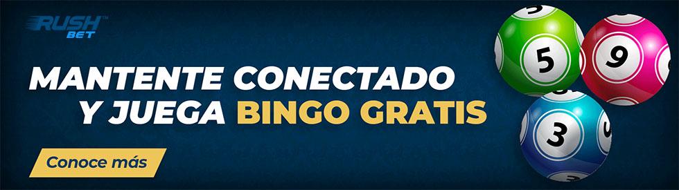 como hacer un bingo