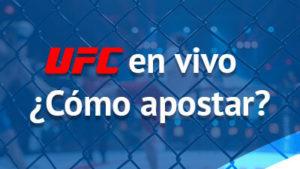 UFC peleas